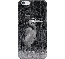 Heron, Hunting iPhone Case/Skin