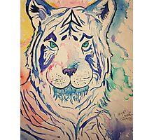 Tiger Splash Photographic Print