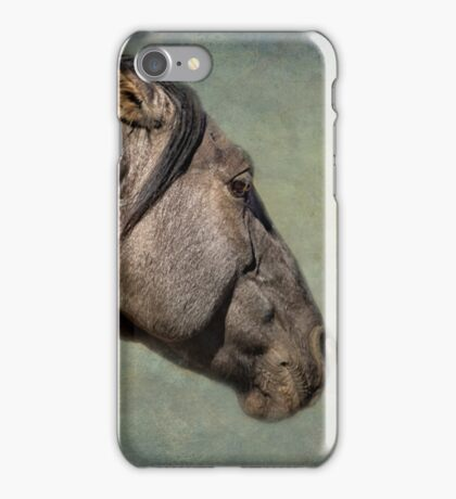 Garcia No. 1- Pryor Mustangs iPhone Case/Skin