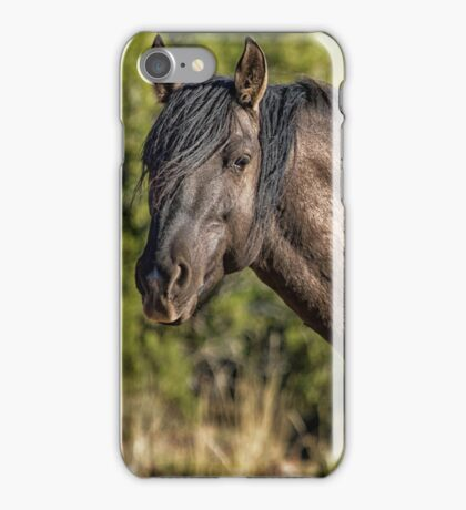Garcia No. 2-Pryor Mustangs iPhone Case/Skin