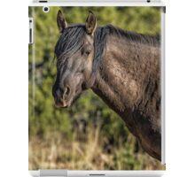 Garcia No. 2-Pryor Mustangs iPad Case/Skin