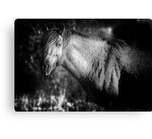 Garcia No. 2-Pryor Mustangs bw Canvas Print