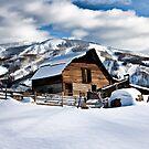 Steamboat's cabin.  by Larrikin  Photography