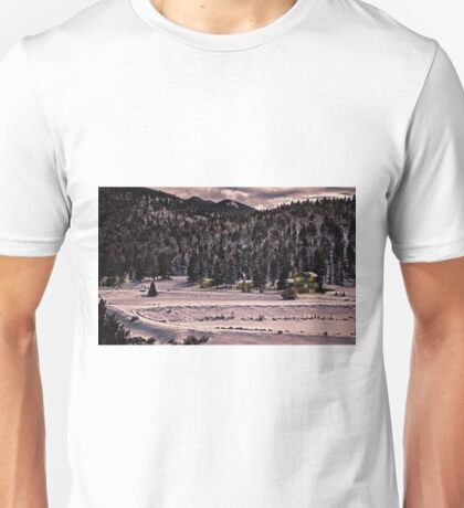 The forest.  T-Shirt