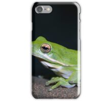 Night Time Visitor iPhone Case/Skin