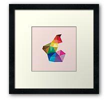 Homage to the Rainbow Framed Print