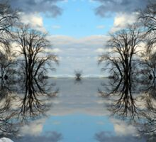 trees reflection Sticker