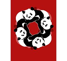 PANDA PLAY Photographic Print
