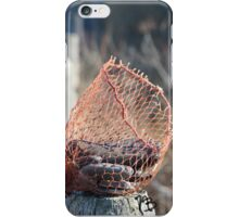 Picture of rocks in a fishing net at beach iPhone Case/Skin
