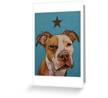 American Pit Bull Greeting Card