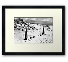 Too Cold to Swim Framed Print