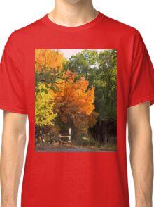 Colorado's Autumn Show Stopper Classic T-Shirt