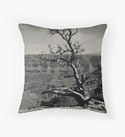 Secure I Stand Throw Pillow