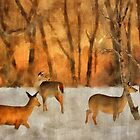 Creatures Of A Winter Sunset by Lois  Bryan
