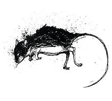 Inky Mouse Photographic Print