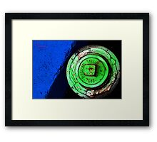 Beauty in the strangest place Framed Print