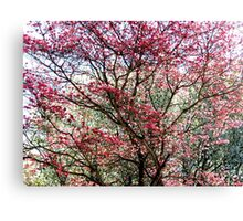 Glorious Spring Canvas Print