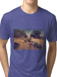 Rooted in Love Tri-blend T-Shirt