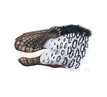 Scaly Tyrannosaurus Photographic Print