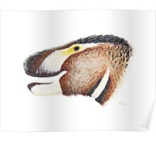 Fuzzy Tyrannosaurus Poster