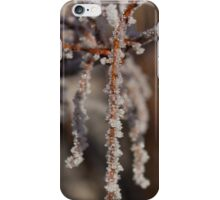 Frosty Pendant iPhone Case/Skin