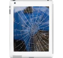 Frosty web iPad Case/Skin