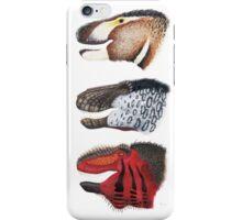 Triple rex iPhone Case/Skin