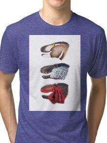 Triple rex Tri-blend T-Shirt