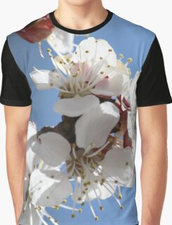 APRICOT BLOSSOMS Graphic T-Shirt