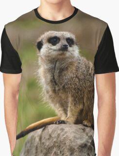 MEERKAT Graphic T-Shirt