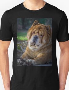 Cute chow dog portrait T-Shirt