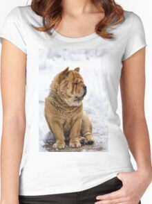 Winter chow dog portrait Women's Fitted Scoop T-Shirt