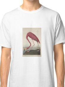 John James Audubon American Flamingo  Classic T-Shirt