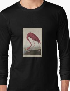 John James Audubon American Flamingo  Long Sleeve T-Shirt