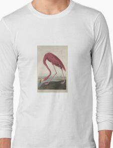John James Audubon American Flamingo  Long Sleeve T-Shirt