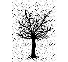 Black and White Tree Photographic Print