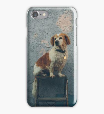 The Shaggy Dog iPhone Case/Skin