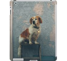 The Shaggy Dog iPad Case/Skin