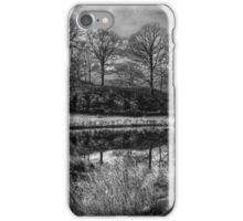 The Island Of Trees iPhone Case/Skin