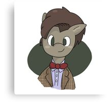 11th Doctor whooves Canvas Print