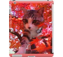 Autumn leaves and cats iPad Case/Skin