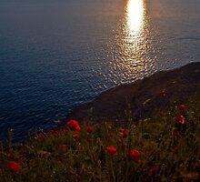 sunrise in bay Agay-Côte d'Azur,France by GOSIA GRZYBEK