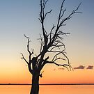 Sunset Lake **SPECIAL OFFER ** by Ray Warren