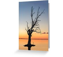 Sunset Lake **SPECIAL OFFER ** Greeting Card