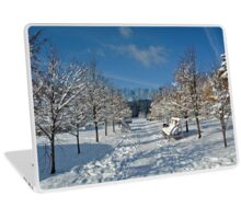 Winter alley of trees, Siberia, Russia Laptop Skin