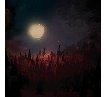 Landscape night in the woods Photographic Print