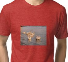 Danube swans Tri-blend T-Shirt