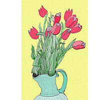 Red Tulips ~  Photographic Print