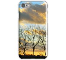 Trees Silhouette in the Sunset iPhone Case/Skin