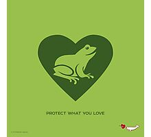 LOVE: Frogs Photographic Print